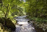 Urlaubsregion am Nationalpark Bayerischer Wald
